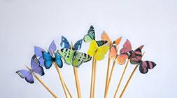 Edible Butterflies - Mini Assorted Rainbow Set of 48 - Cake