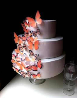 Edible Butterflies ? - Assorted Set of 30 Orange - Cake and