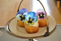 Edible Pansies - Pink, Purple, and Blue Set of 12 - Cake and