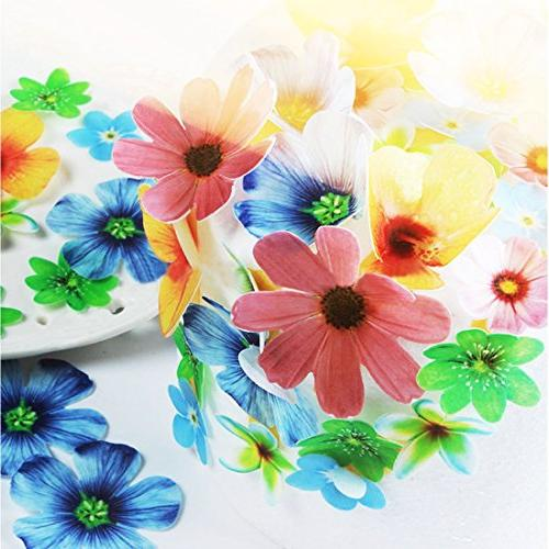 GEORLD of 48 Edible Flowers Wedding Party Food Decoration
