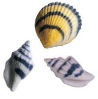 "24pk Seashells Black Stripe 1 1/2"" Edible Sugar Decoration T"