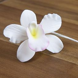 Pearly Orchids, White with Light Pink & Yellow Center, 24 Co